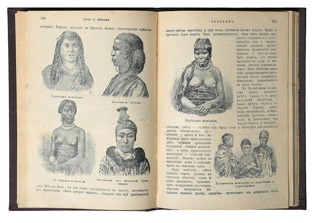 Человек. Популярный курс антропологии
