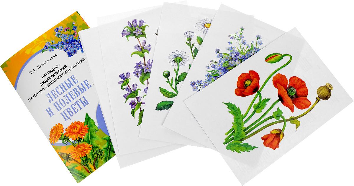 Наглядно-дидактический материал с конспектами занятий. Лесные и полевые цветы
