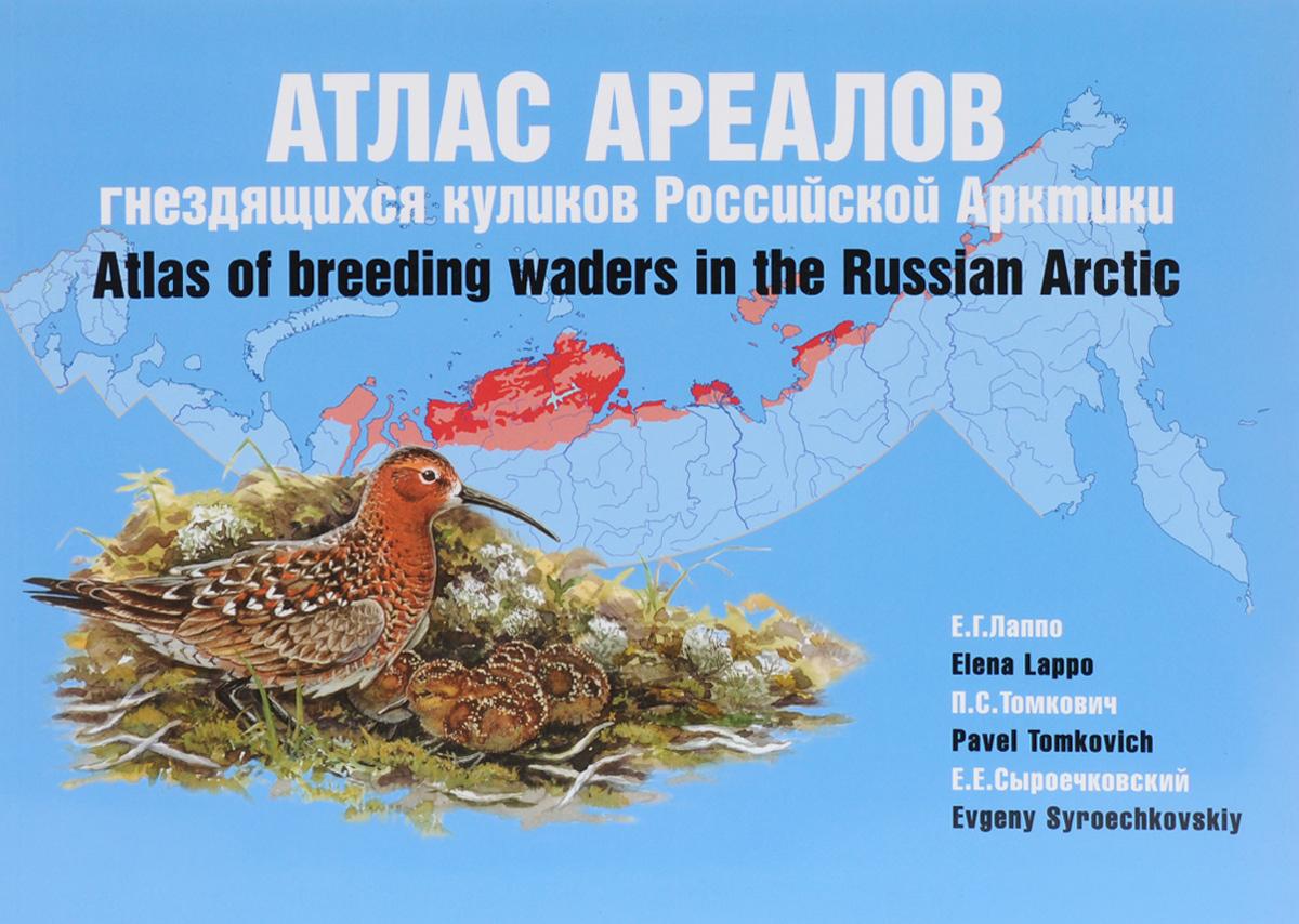 Атлас ареалов гнездящихся куликов Российской Арктики / Atlas of Breeding Waders in the Russian Arctic