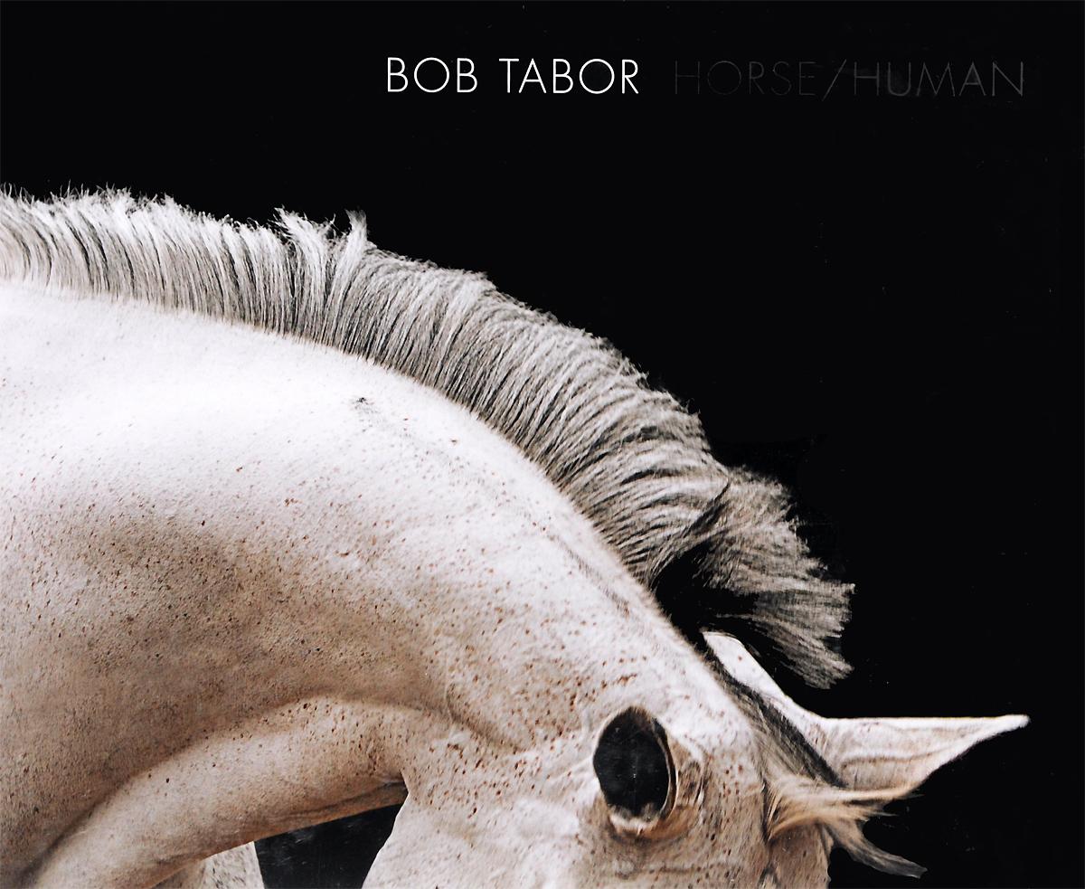 Horse/Human: An Emotional Bond