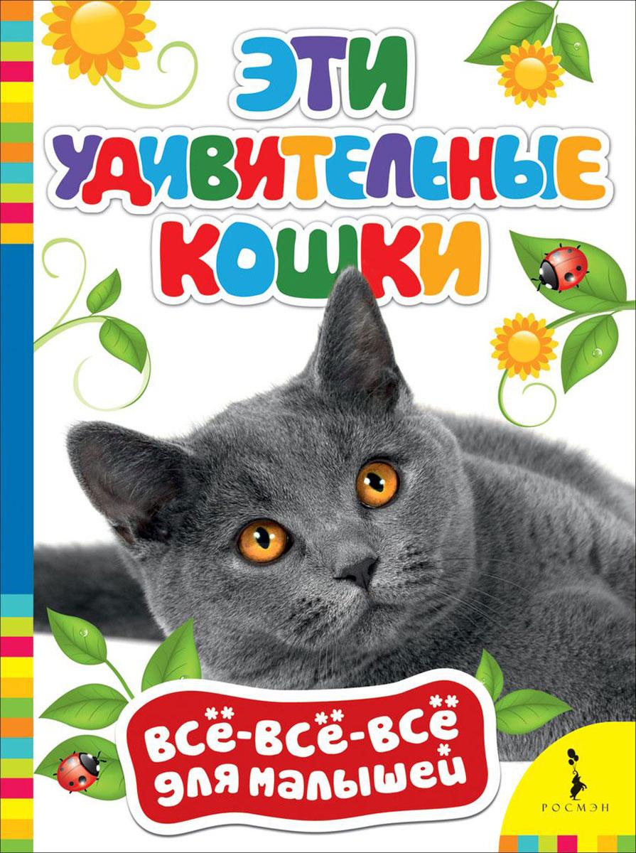 Эти удивительные кошки12296407Познавательные книжки в серии Всё-всё-всё для малышей предназначены для расширения кругозора ребенка, увеличения словарного запаса, развития навыков общения. Издания проиллюстрированы красочными фотографиями, содержат вопросы и задания и являются замечательными пособиями для занятий с малышом.