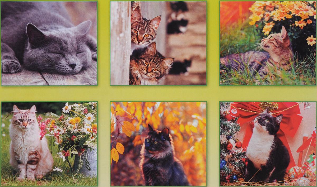 Календарь 2017 (на скрепке). Кошки