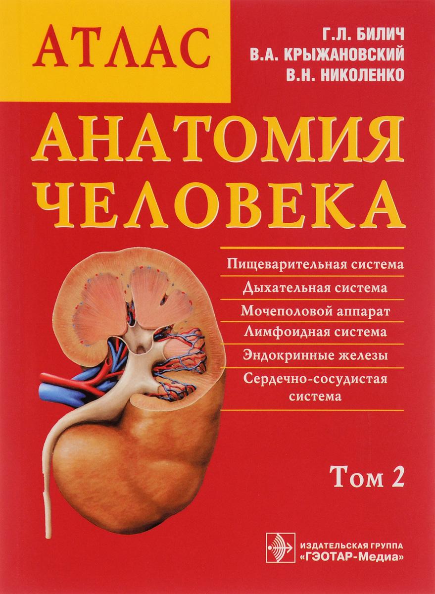 Анатомия человека. Атлас. В 3 томах. Том 2