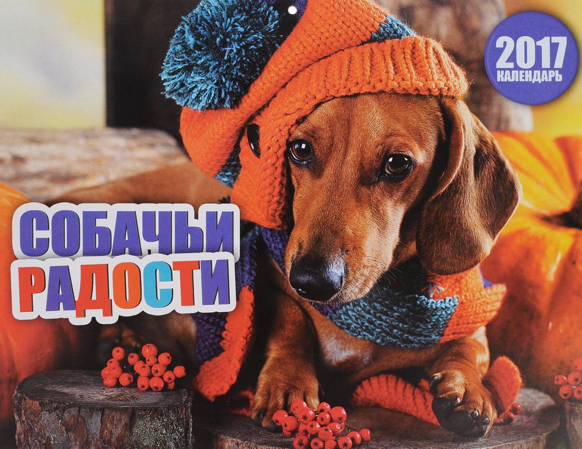 Перекидной календарь на 2017 год. Собачьи радости ( 4620011169914 )