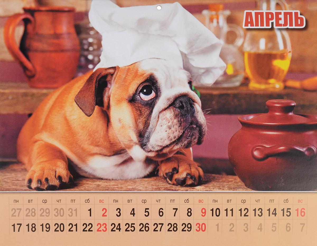 Календарь 2017 (на скрепке). Собачьи радости
