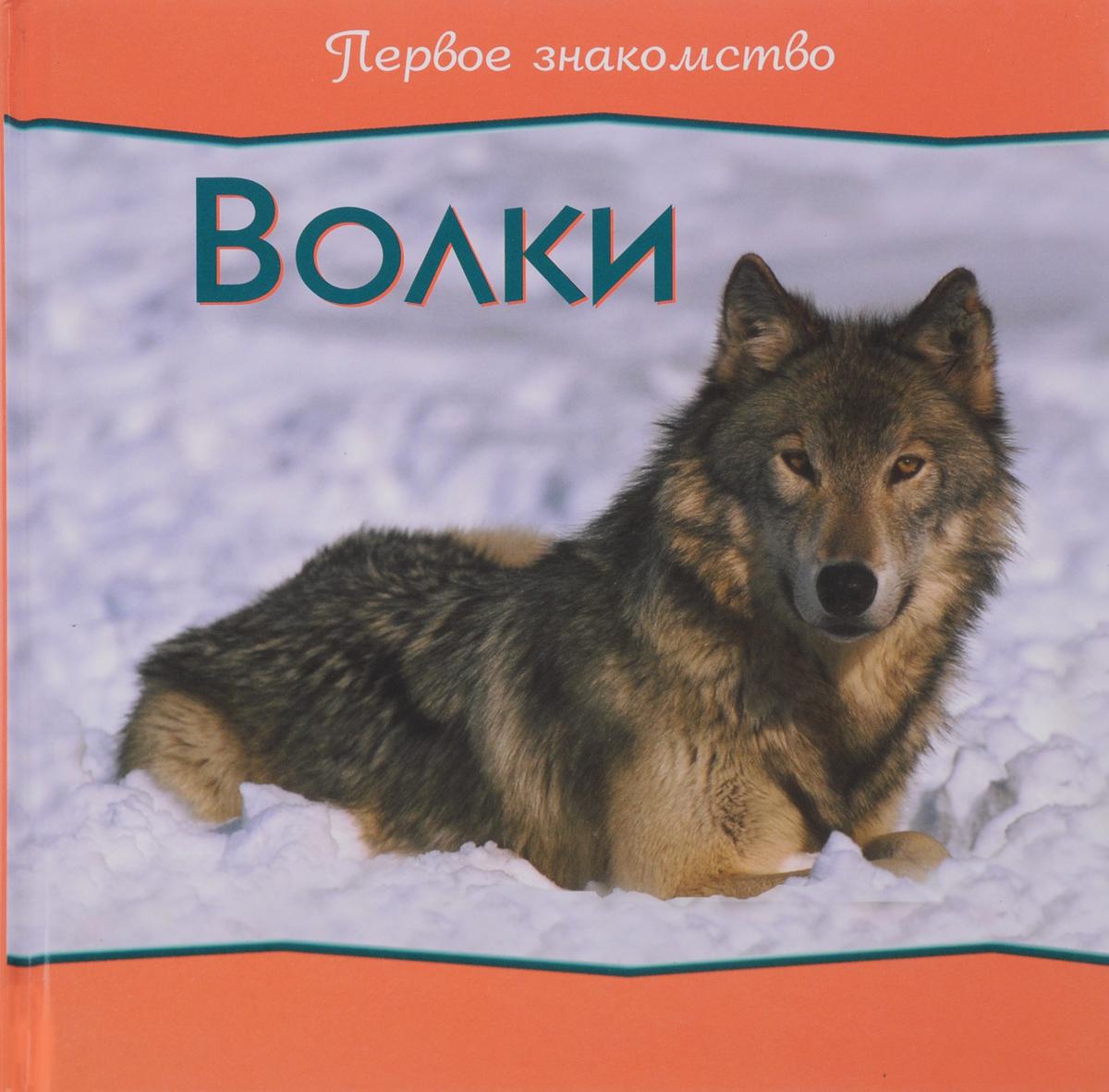 Книга Первое Знакомство