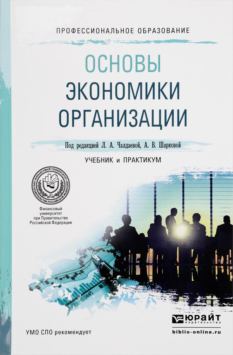 Основы экономики организации. Учебник и практикум