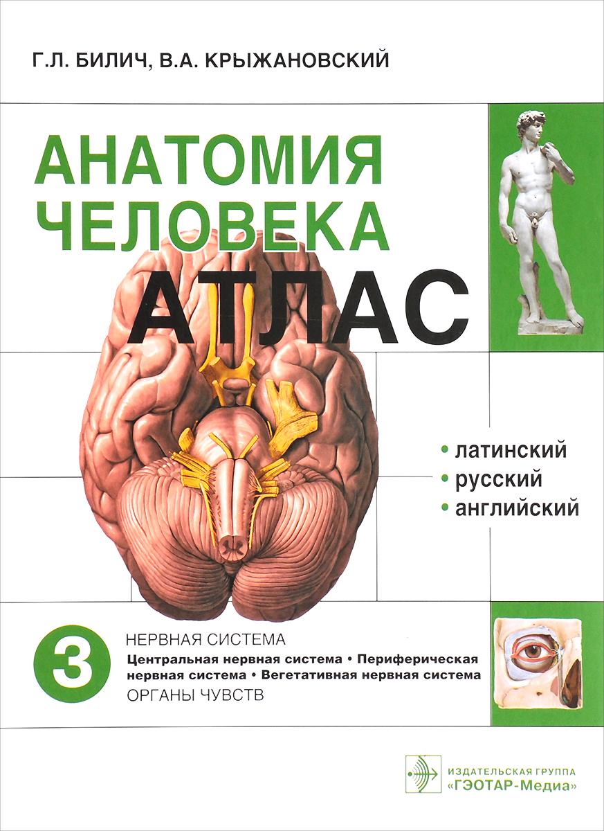 Анатомия человека. Атлас в 3 томах. Том 3. Нервная система. Органы чувств