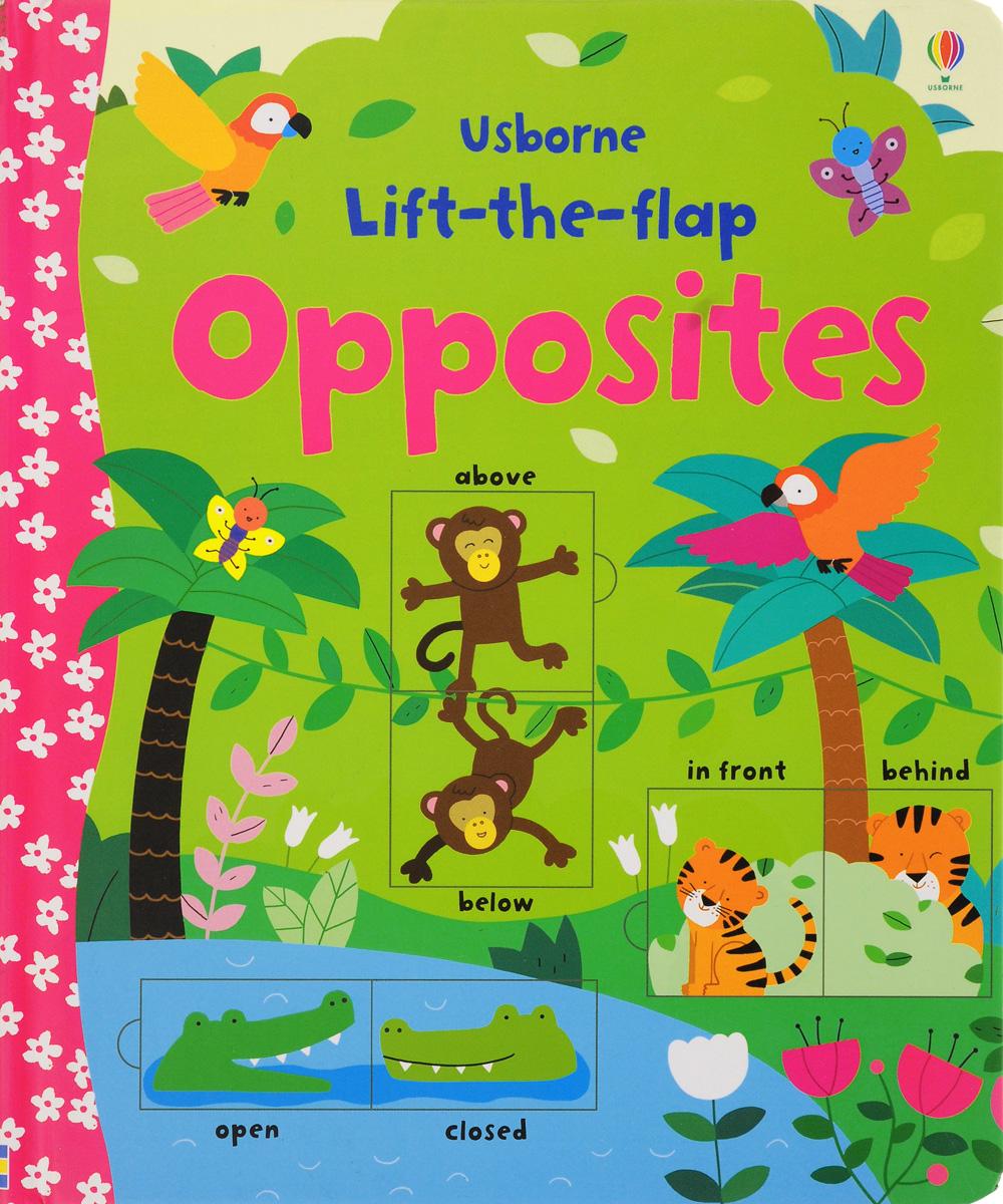 Felicity Brooks Lift-the-Flap Opposites 38 parrots