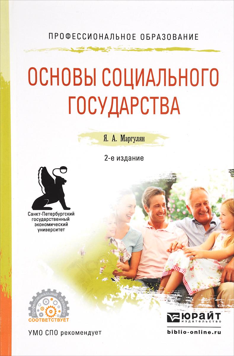 Основы социального государства. Учебное пособие