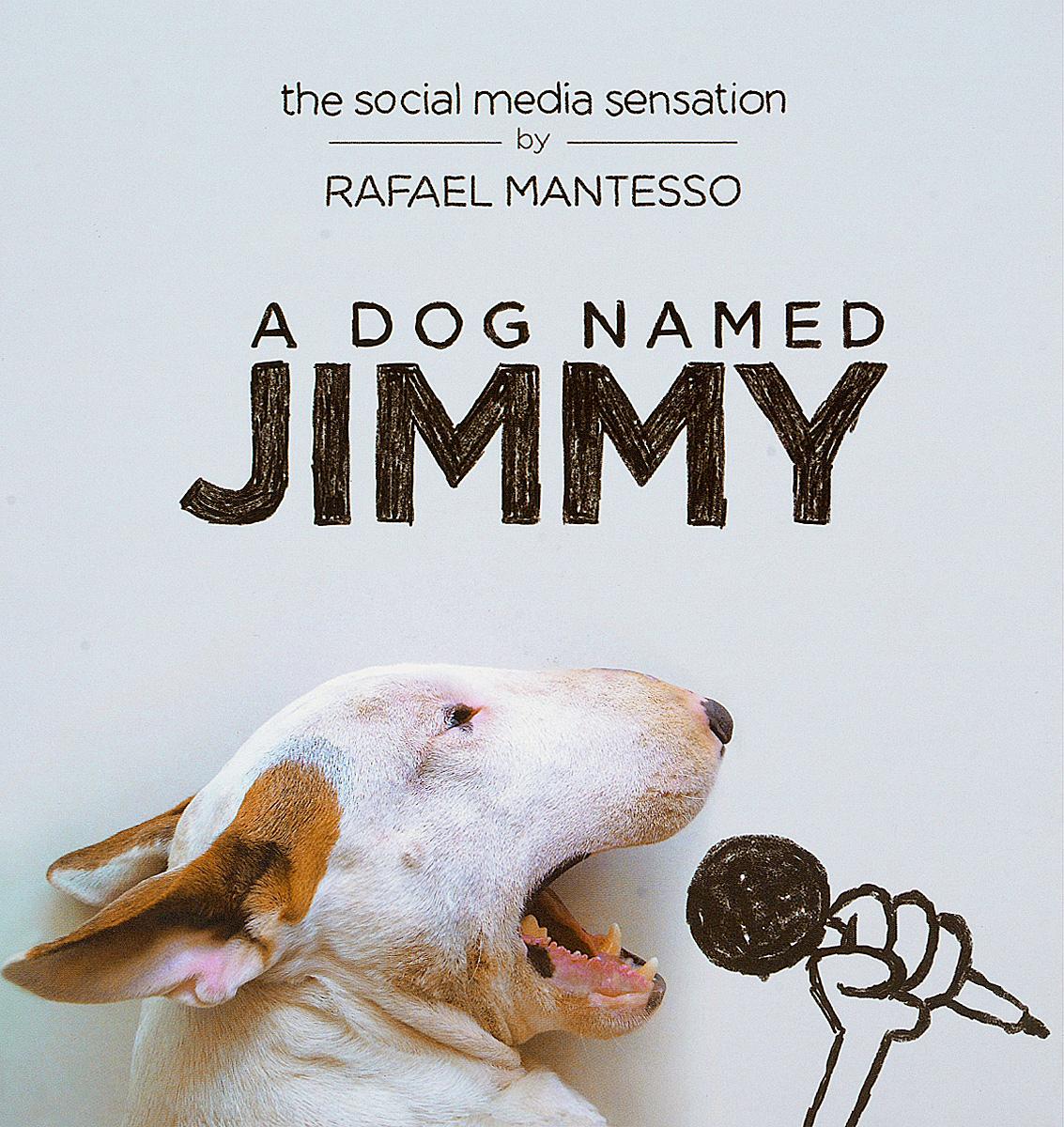 DOG NAMED JIMMY, A
