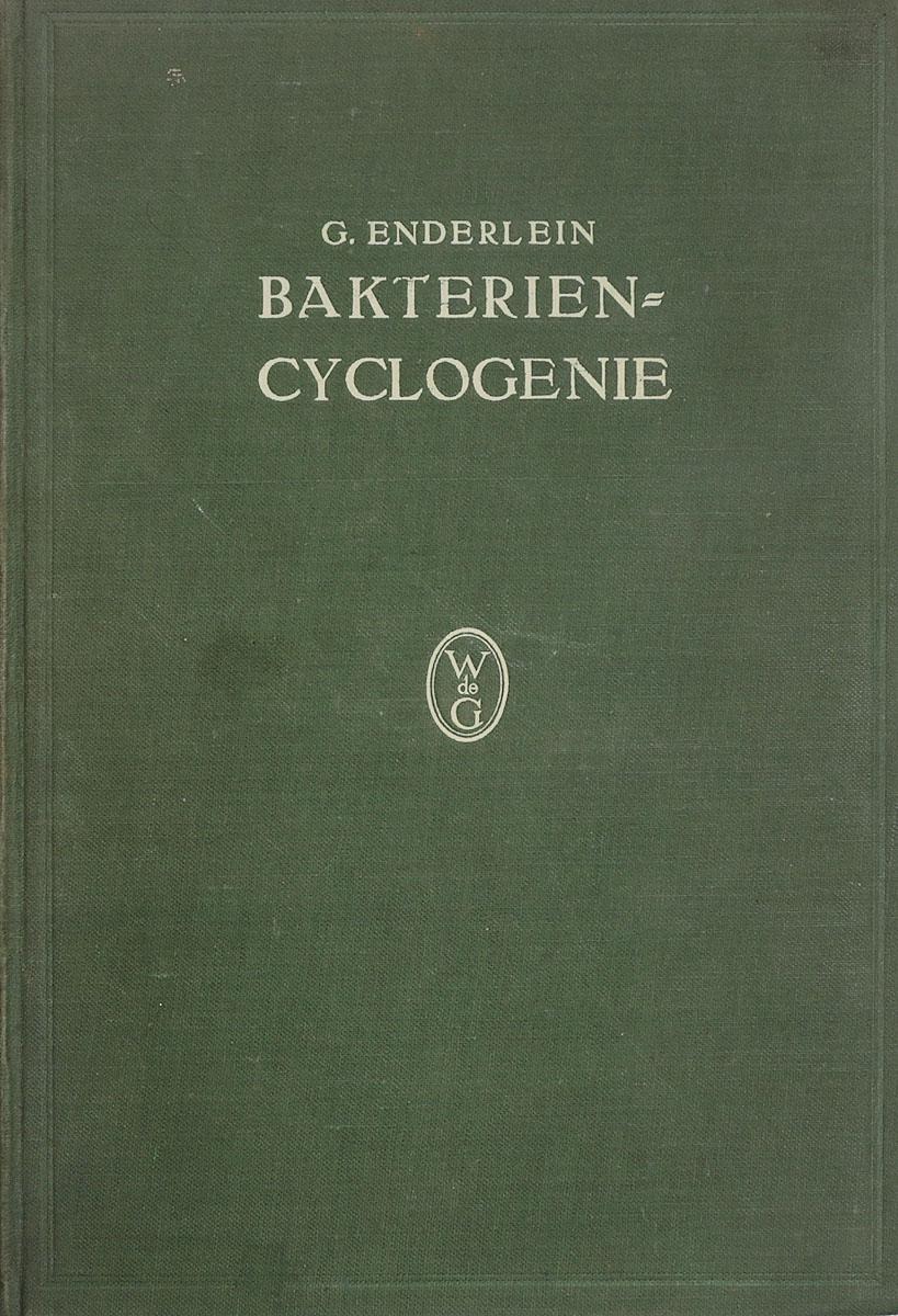 Bakterien-CyclogenieАККАА