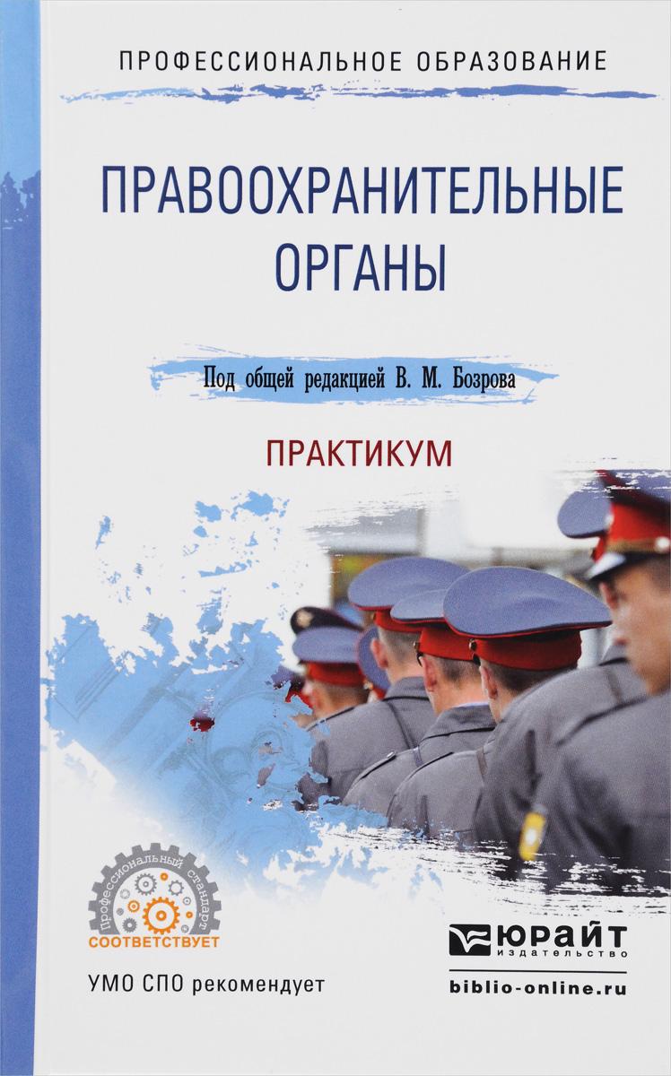 Правоохранительные органы. Практикум. Учебное пособие