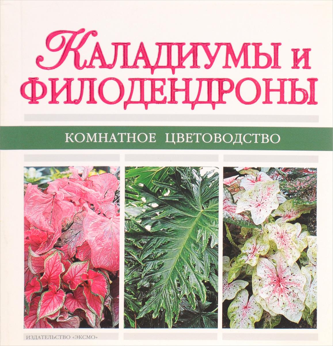 Каладиумы и филодендроны