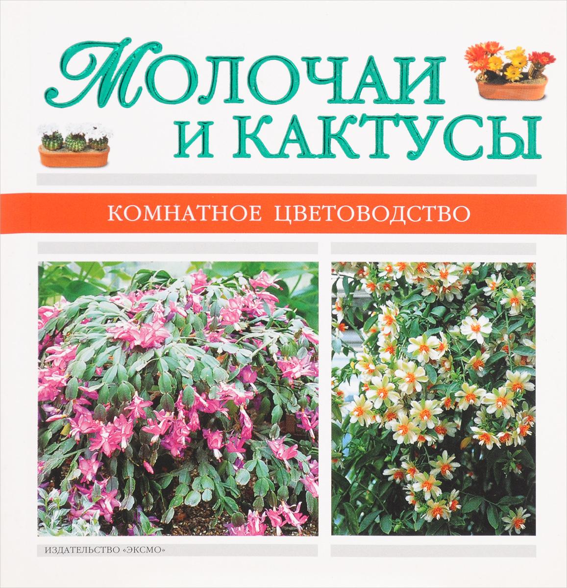 Молочаи и кактусы
