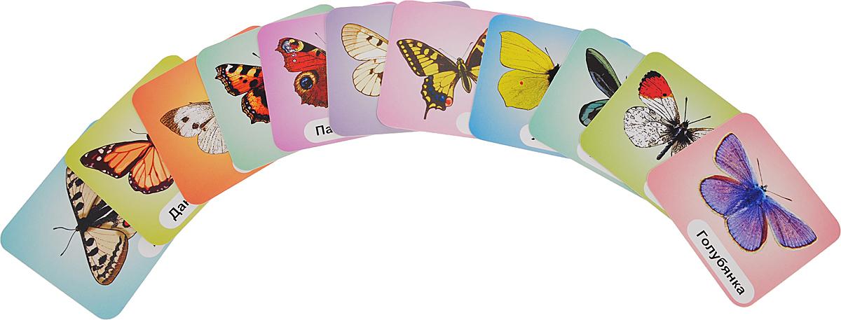 Бабочки (набор из 12 развивающих карточек)