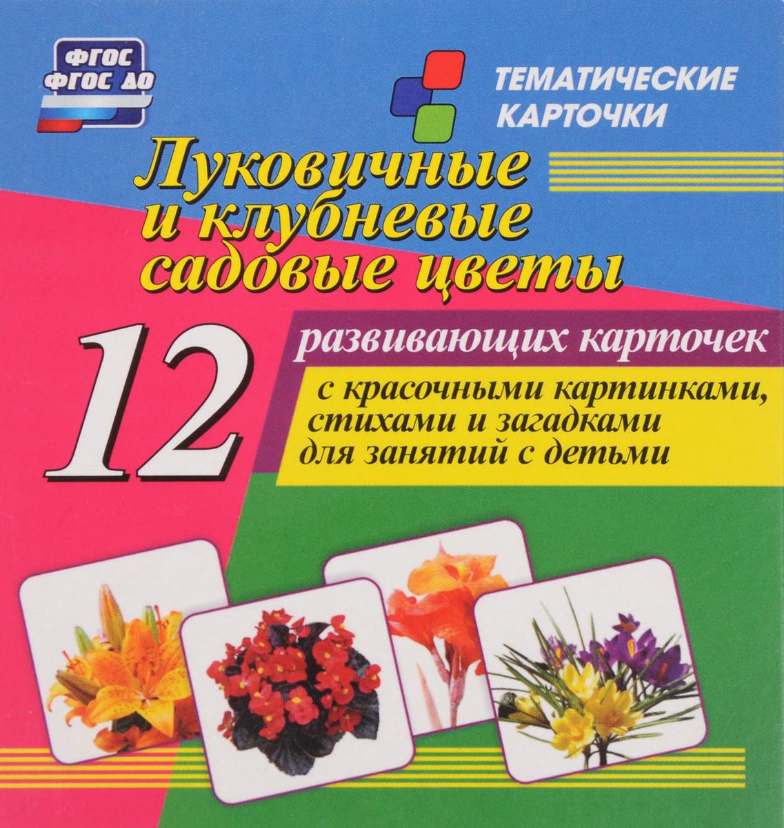 Луковичные и клубневые садовые цветы (набор из 12 развивающих карточек)