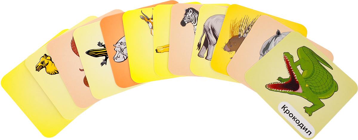 Животные жарких стран (набор из 12 развивающих карточек)