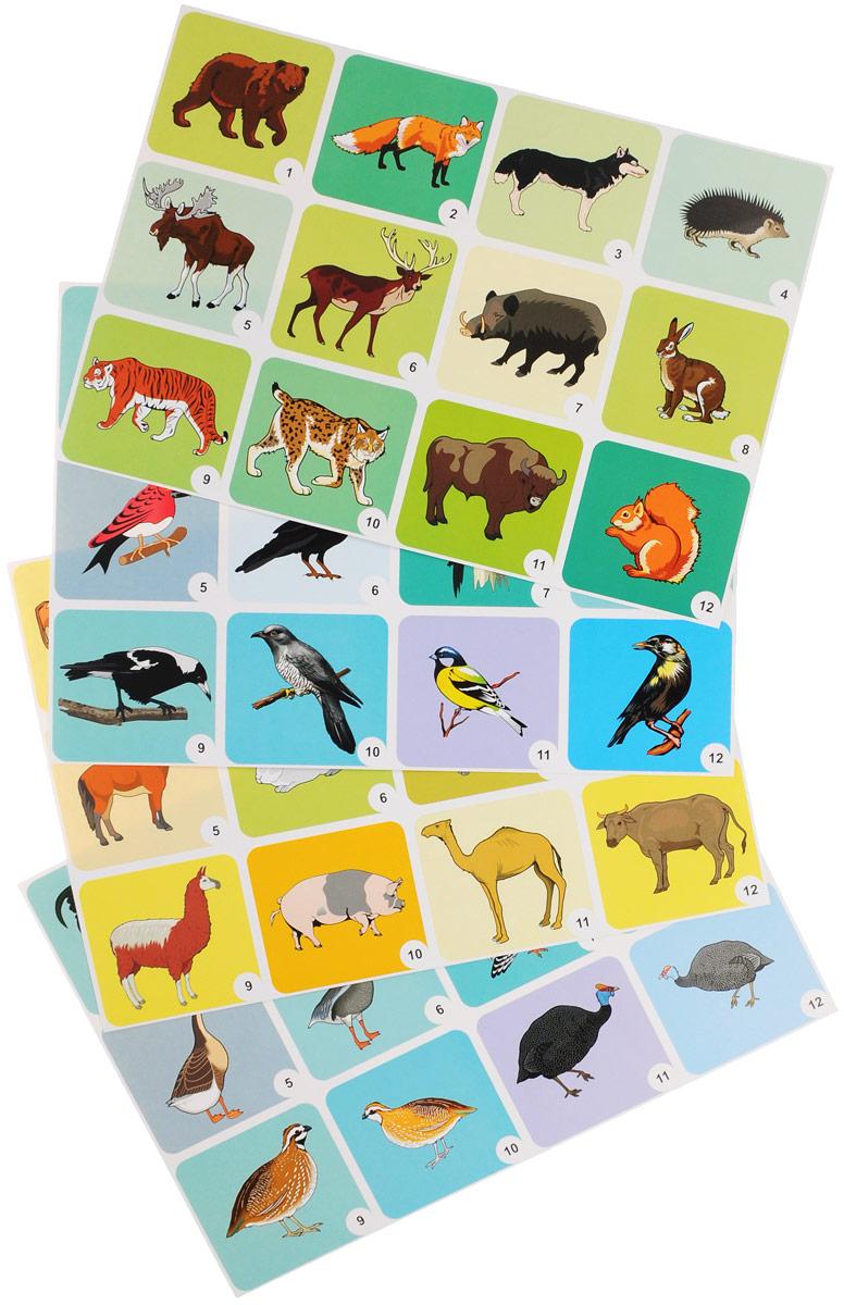 Дикие и домашние животные и птицы (комплект из 4 плакатов с методическим сопровождением)