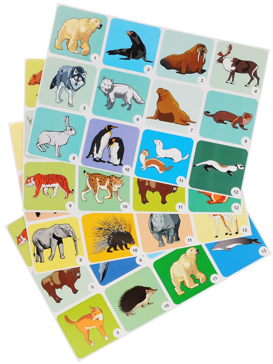 Животные разных широт (комплект из 4 плакатов с методическим сопровождением)