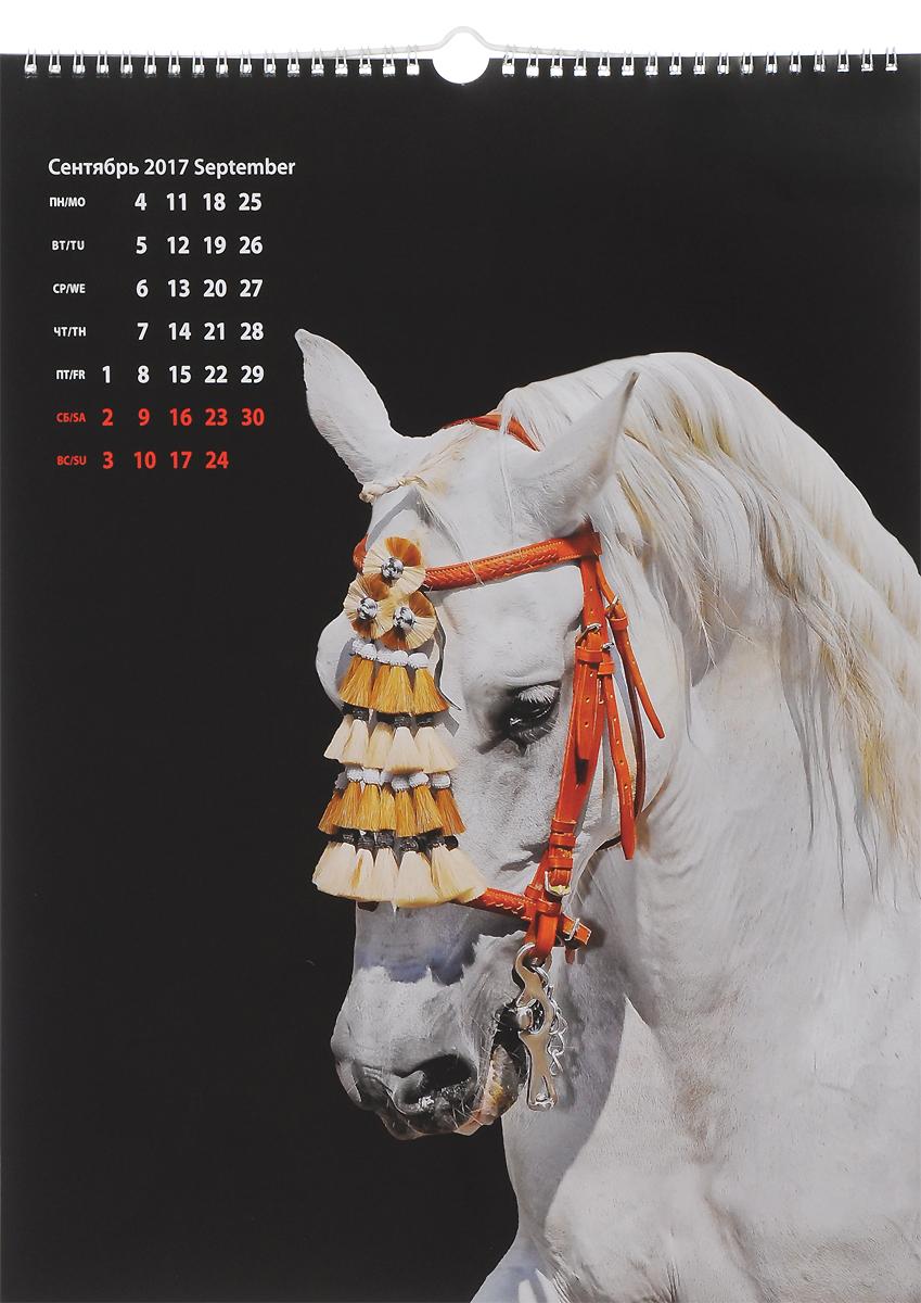 Календарь 2017 год (на спирали). Лошади / Horses