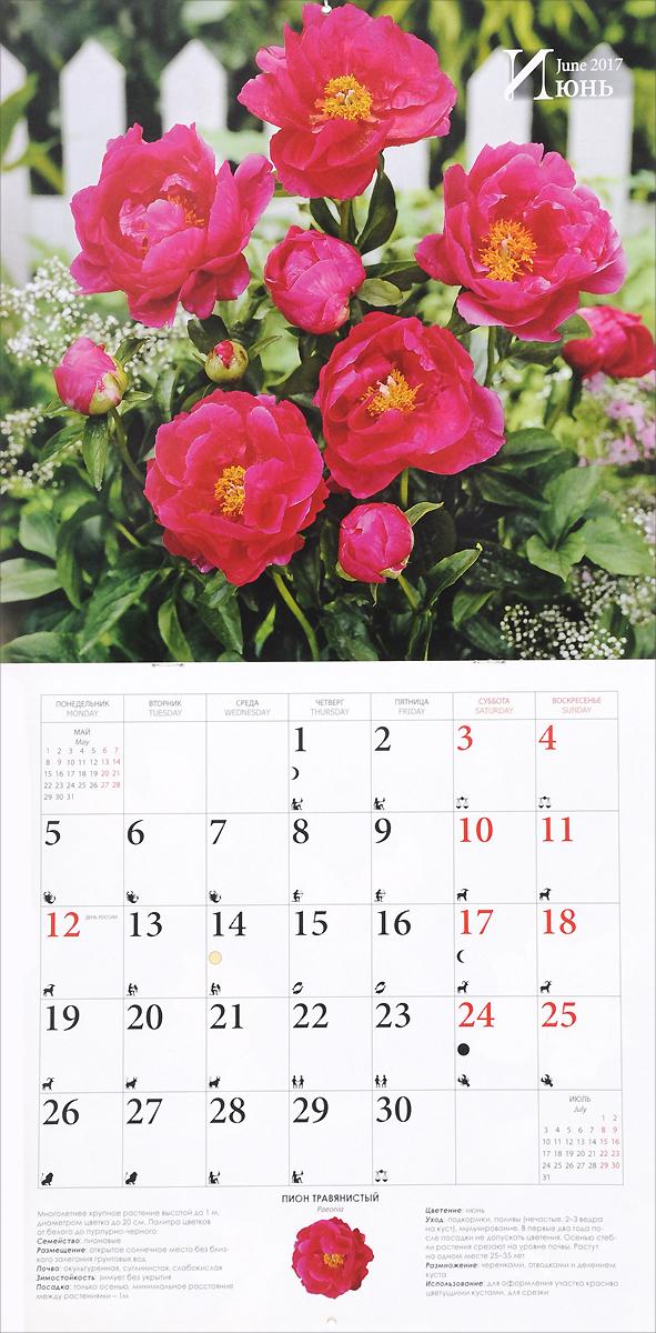 Календарь 2017 (на скрепке). Цветы на даче