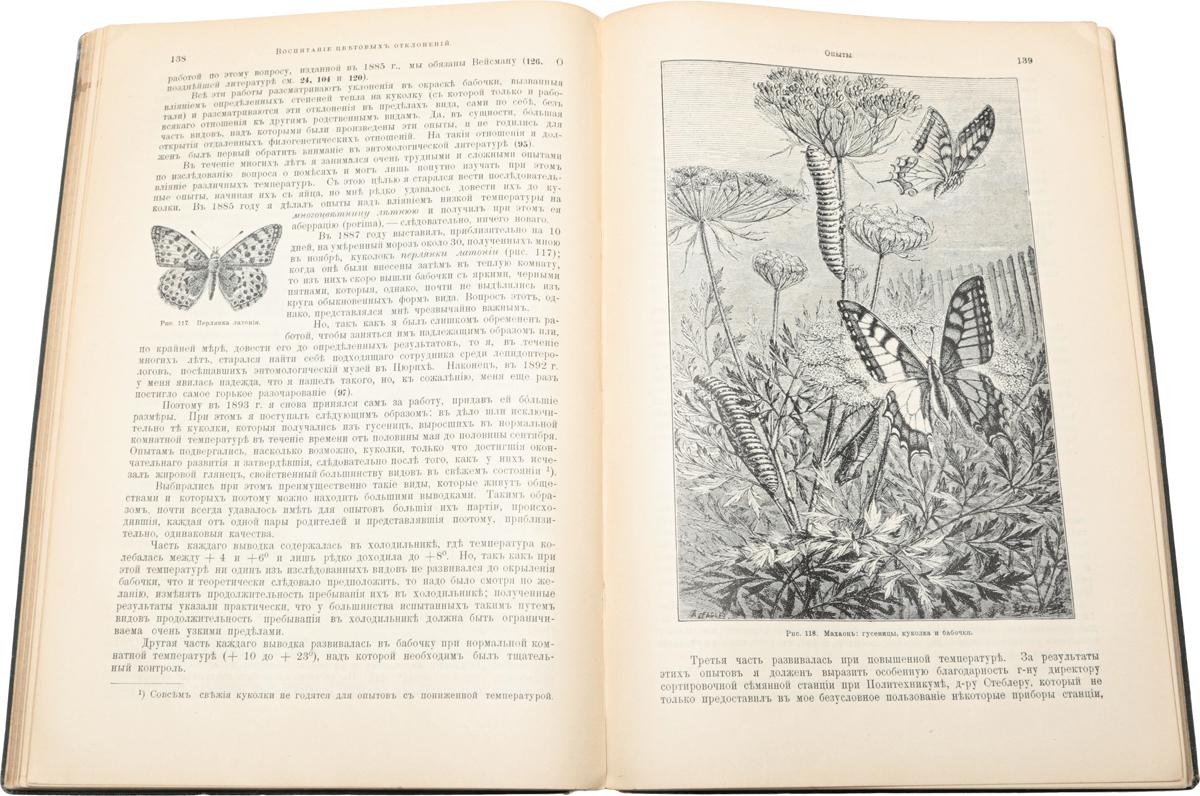 Жизнь бабочек, их ловля, воспитание и сохранение
