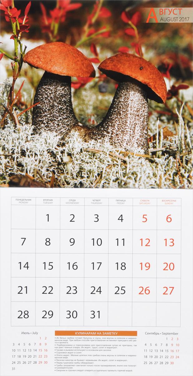 Календарь 2017 (на скрепке). Дары леса. Советы грибникам и ягодникам