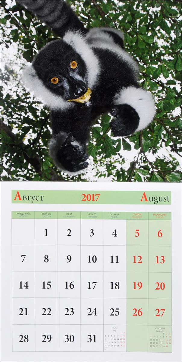 Календарь 2017 (на скрепке). В мире животных / In the World of Animals
