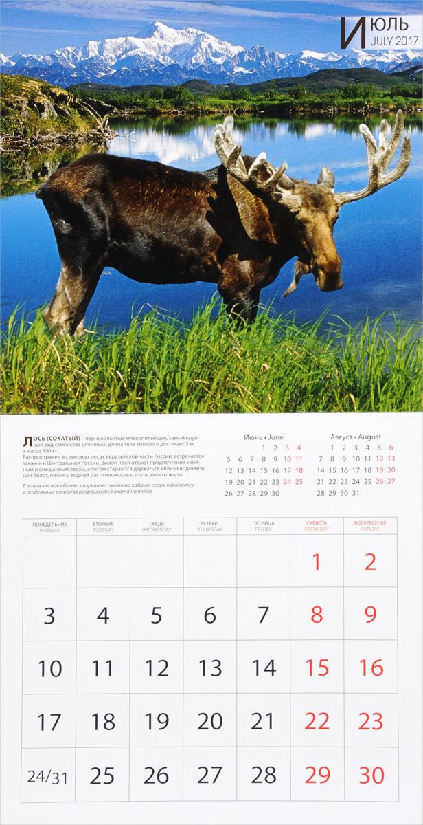Календарь 2017 (на скрепке). Охота / Hunting