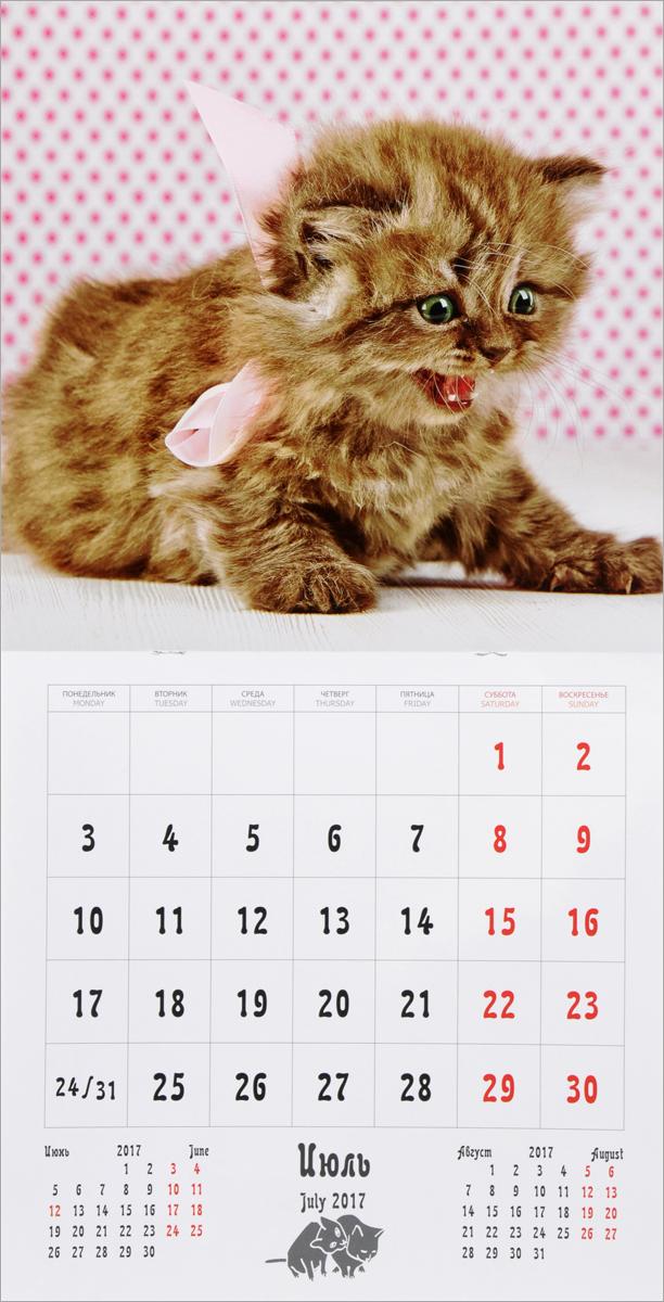 Календарь 2017 (на скрепке). Забавные котята / Funny Kittens