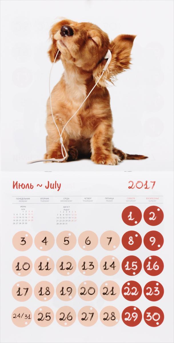 Календарь 2017 (на скрепке). Прикольные собачки