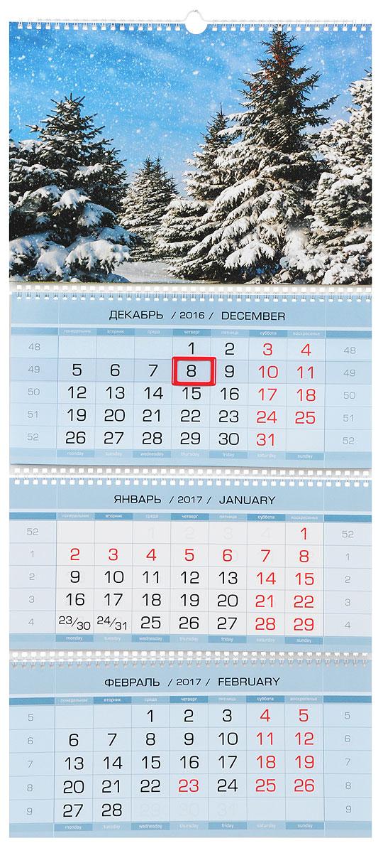 Календарь 2017 (на спирали). Родные просторы