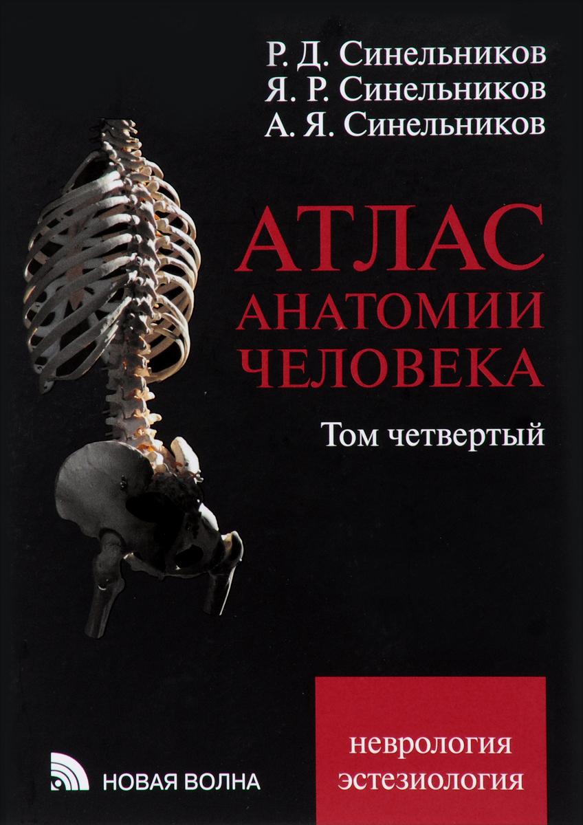 Атлас анатомии человека. В 4 томах. Том 4. Учение о нервной системе и органах чувств. Учебное пособие
