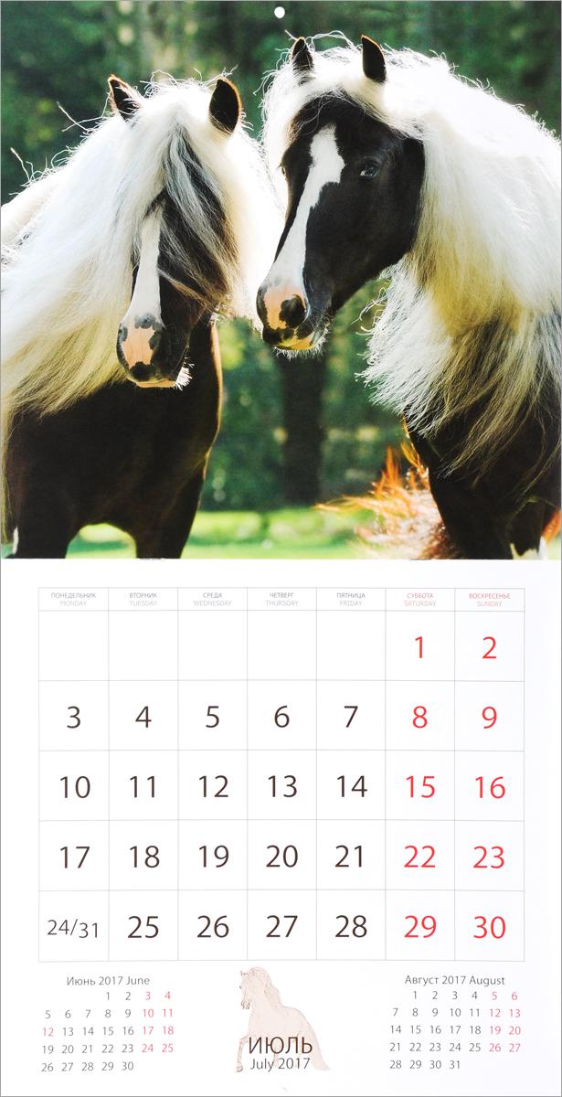 Календарь 2017 (на скрепке). Лошади / Horses