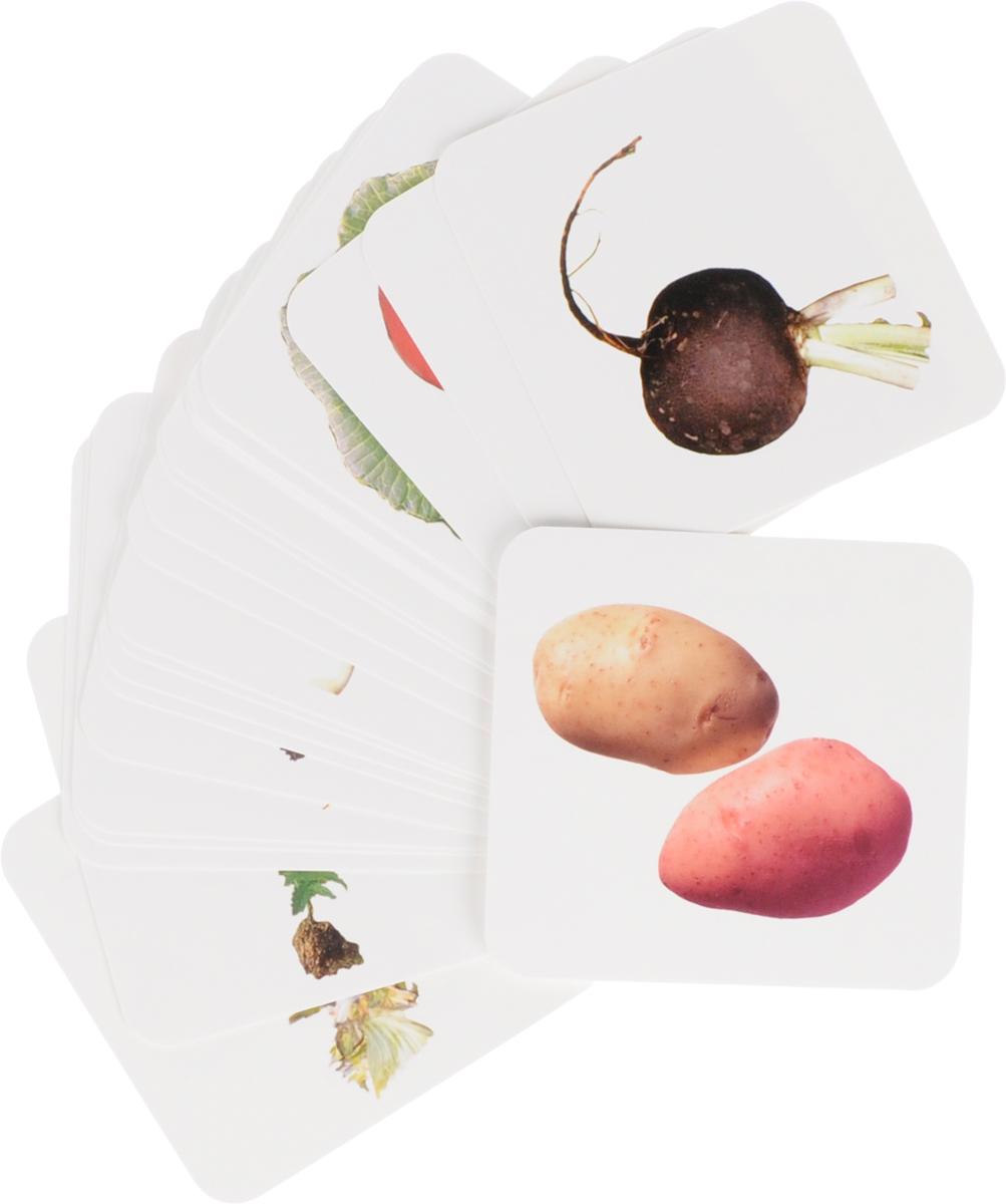 Вершки и корешки. Игры на узнавание, нахождение пар, группировку и обобщение предметов: 24 красочные карточки со стихами и загадками, описание развивающих игр