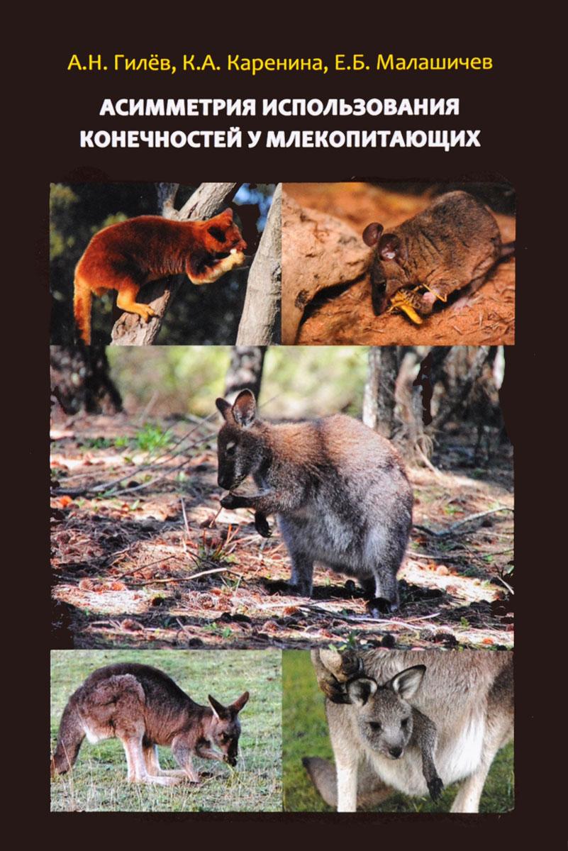 Асимметрия использования конечностей у млекопитающих