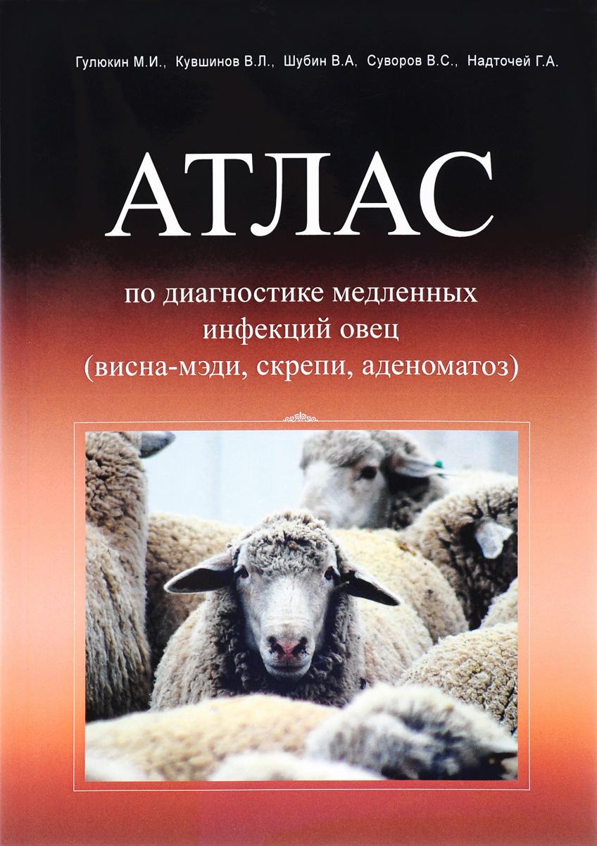 Атлас по диагностике медленных и прионных инфекций овец