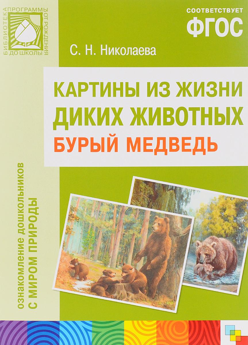 Картины из жизни диких животных. Бурый медведь
