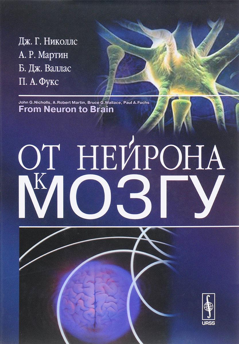 От нейрона к мозгу