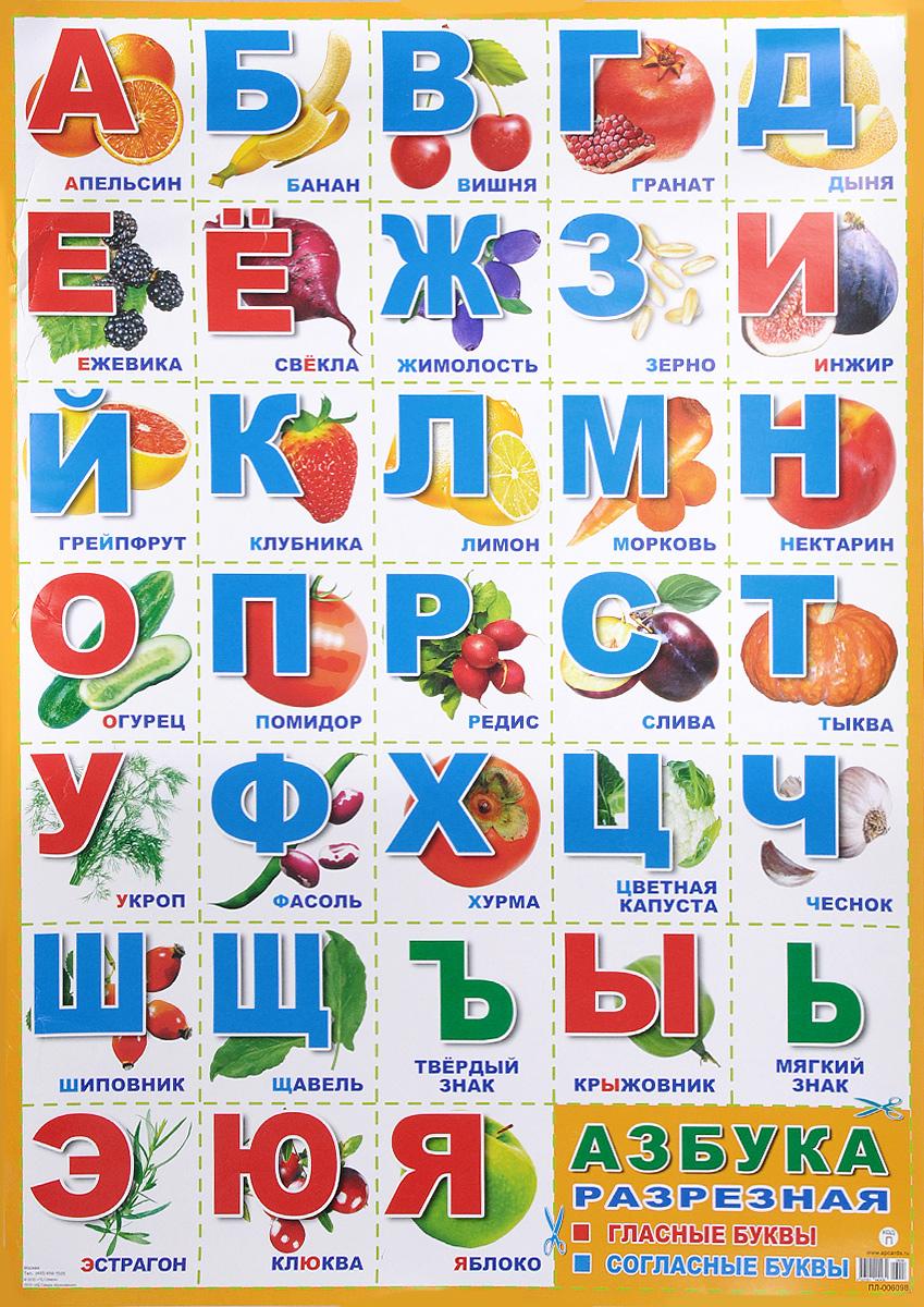 Плакат А-2. Азбука разрезная. Гласные буквы, согласныет буквы
