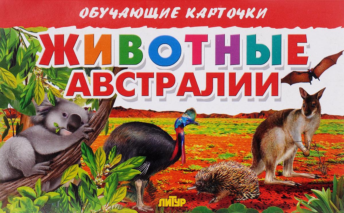 Животные Австралии (набор из 16 карточек)