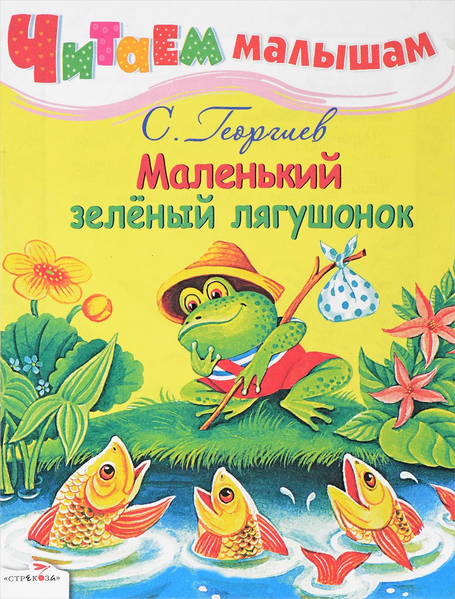 Маленький зеленый лягушонок