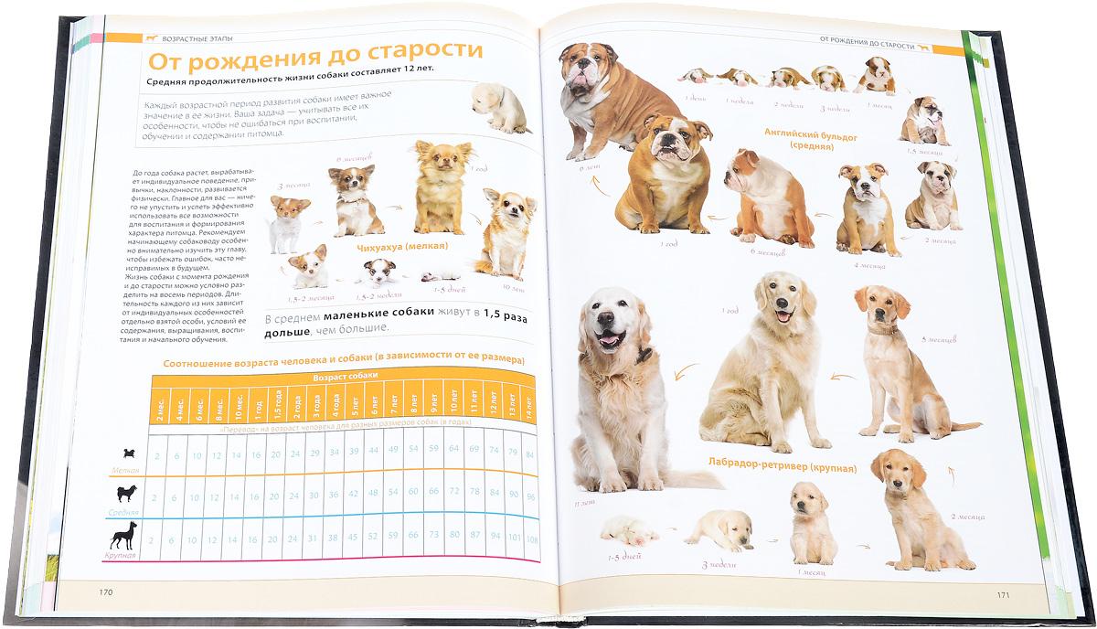 Собаки. Подарочная иллюстрированная энциклопедия