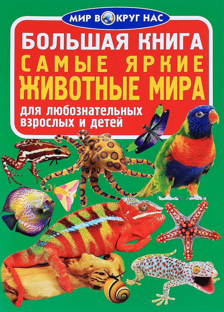 Самые яркие животные мира