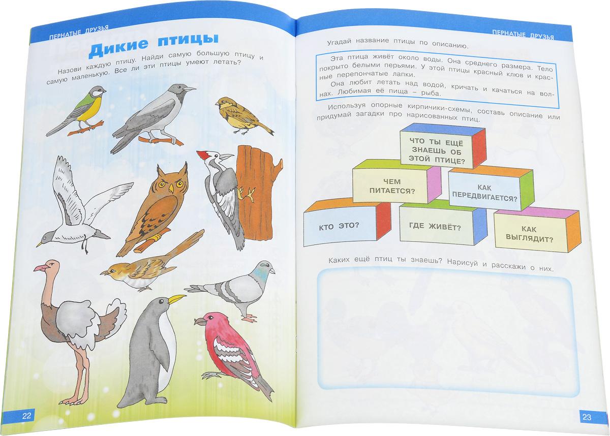 Окружающий мир №2. Развивающие задания для детей дошкольного возраста