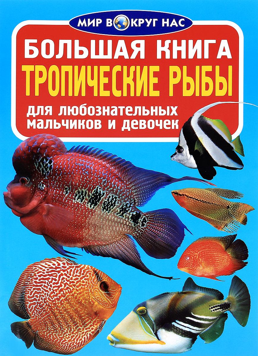 Большая книга. Тропические рыбы