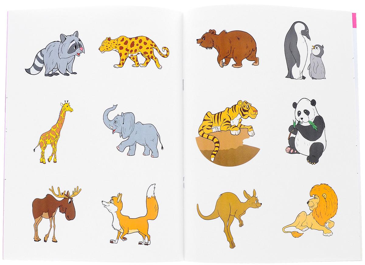 Дикие животные мира (комплект из 2 книг + наклейки)