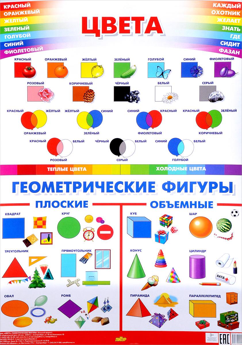 Плакат.Цвета.Геометрические фигуры (550х774 мм) (3+)