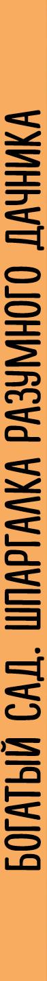Богатый сад. Шпаргалка разумного дачника. 100 экспресс-советов
